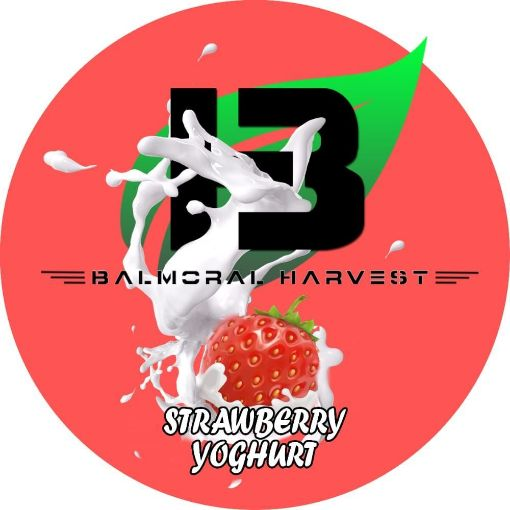 Picture of Double Cream Strawberry Yoghurt (500g)